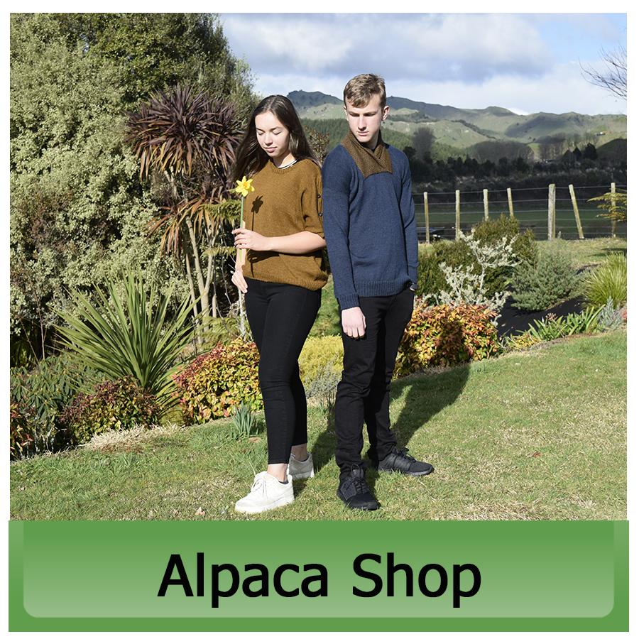 Alpaca Shop